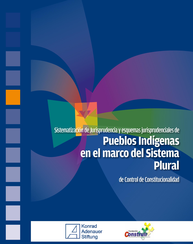 Pueblos Indigenas en el marco del sistema plural-1